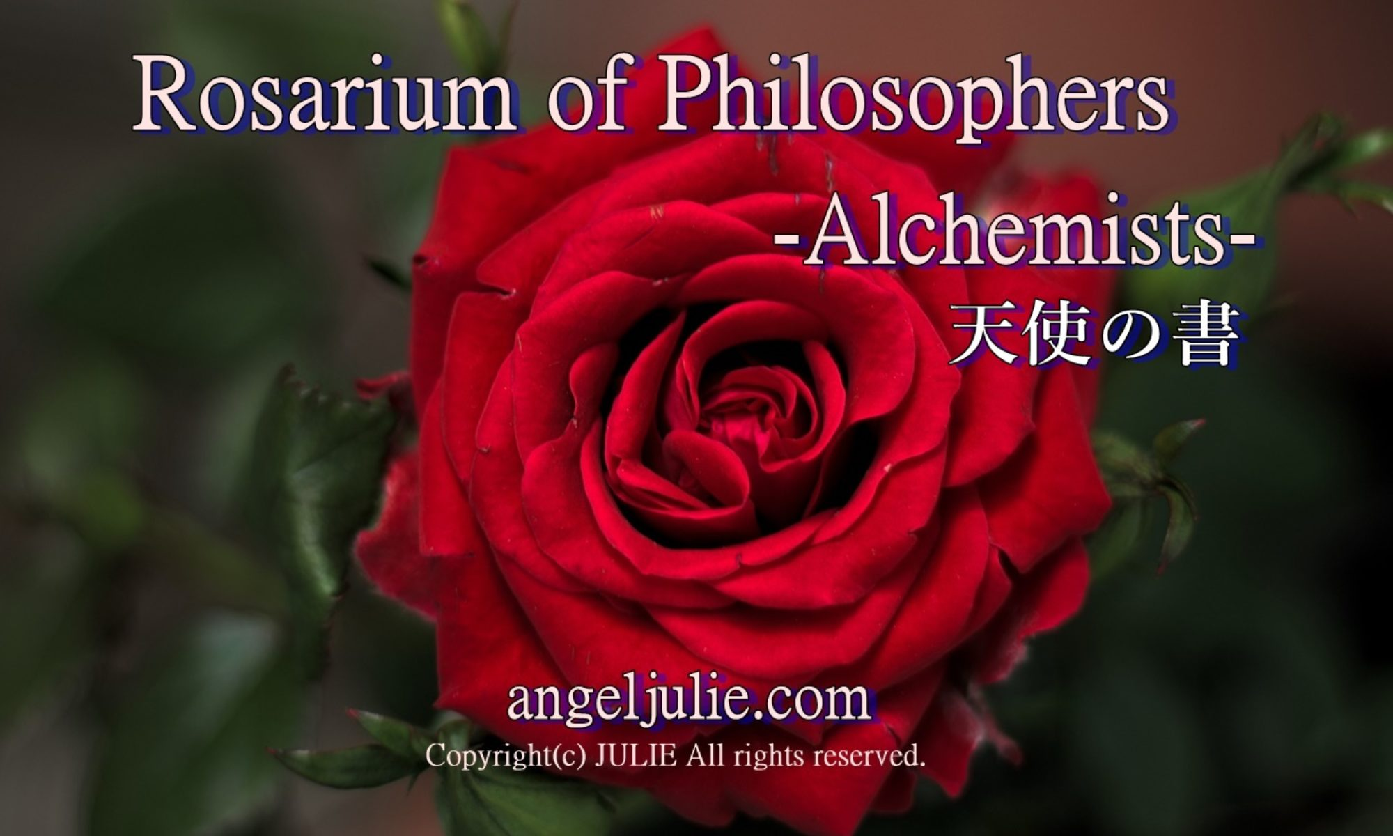 Rosarium of Philosophers Project : Rosarium of Philosophers -Alchemists - Follow my heart by Angel Julie | The Book of Angels